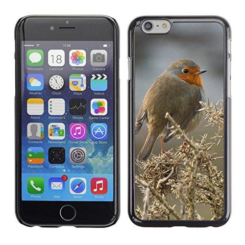 "Premio Sottile Slim Cassa Custodia Case Cover Shell // F00008149 oiseau // Apple iPhone 6 6S 6G 4.7"""