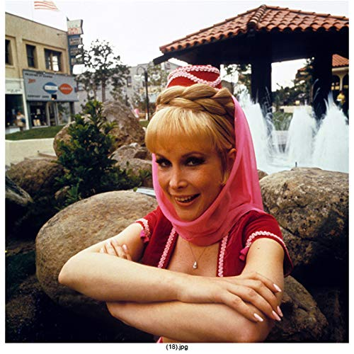 Barbara Eden 8 Inch x 10 Inch Photograph from Slide I Dream of Jeannie 7 Faces of Dr. Lao Harper Valley P.T.A. Arms Crossed Boulders & Fountain in Background kn