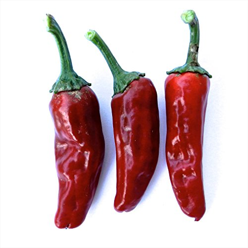 (Wayland Chiles Earliest Hot Organic Pepper Collection Grown in & Ships from The USA, 4 Varieties )