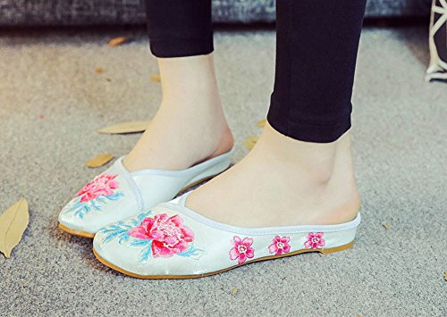 AvaCostume Womens Casual Floral Embroidery Walking Slippers Light Blue LMmPCxSqb6
