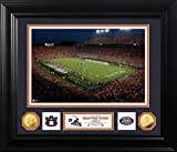 The Highland Mint NCAA Auburn Tigers University Special Edition Coin Photo Mint, 32'' x 27'' x 4'', Gold