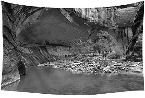 PUPBEAMO PRINTS Zion Narrows rocriver Trees Landscape – Wall Tapestry Art for Home Decor Wall Hanging Tapestry 60×40 Inches Black and White