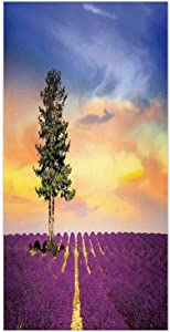 3D Decorative Film Privacy Window Film No Glue,Lavender,Purple Fields with Sunset Sky and Large Green Tree French Village Country Decor,Multicolor,for Home&Office