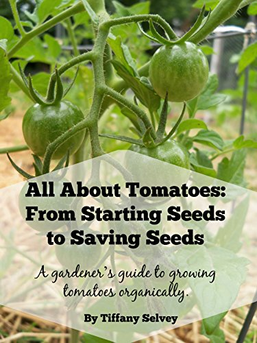 All About Tomatoes: From Starting Seeds to Saving Seeds: A gardener's guide to growing tomatoes organically. by [Selvey, Tiffany]