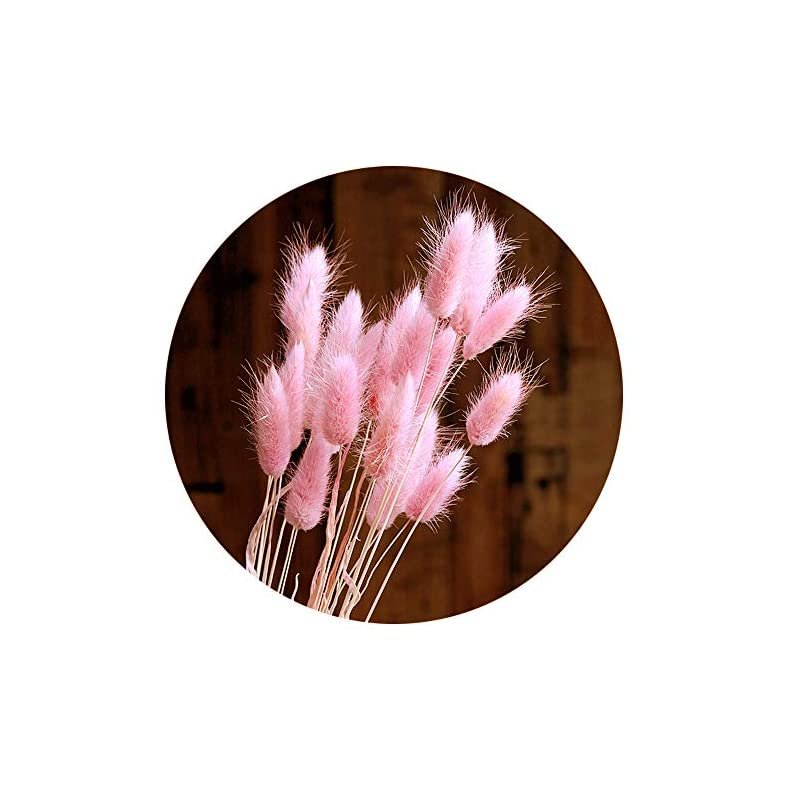 silk flower arrangements color life 110-120 pcs dried natural flowers decoration, dried rabbit tail grass flowers,dried pampas grass, used for home, wedding, party, theme decoration,16in(pale pink)