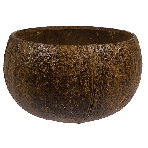 Amscan Hawaiian Summer Luau Party Authentic Coconut Cup, Brown, 2.7 x 4.2