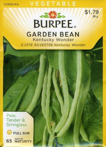 (Burpee 65441 Bean, Pole Kentucky Wonder Seed Packet)