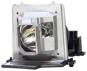 V7 VPL1075-1E - Lámpara de proyector de repuesto para Acer PD100 PD100D PD100P, 180 W, transparente