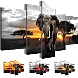 Bilder 170x100 cm !!! SENSATIONSPREIS !!! 100% Made in Germany !!! Bild auf Premium Vlies Leinwand Africa Sunset, Elefanten, Elefant Wand Bild, 5 teilig grau 0012527c