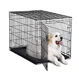 """New World 48"""" Folding Metal Dog Crate, Includes Leak-Proof Plastic Tray; Dog Crate Measures 48L x 30W x 33H Inches, Fits XL Dog Breeds"""