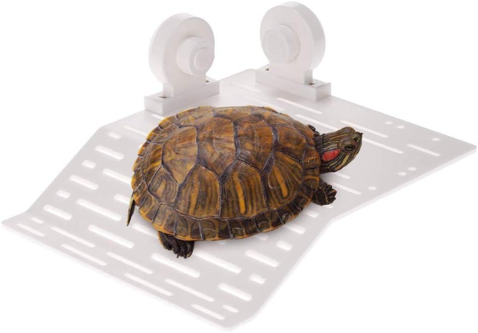 Anself – Isla flotante para tortuga o reptil con ventosas para acuario o tanque