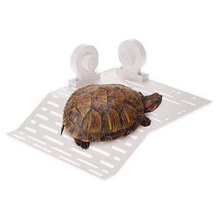 Anself – Isla flotante para tortuga o reptil con ventosas para acuario ...