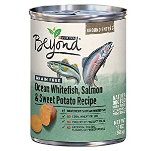 Purina Beyond Grain Free Ocean Whitefish, Salmon & Sweet Potato Adult Wet Dog Food - Twelve (12) 13 oz. Cans