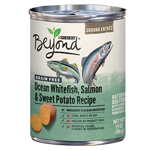 Purina Beyond Grain Free Pate Wet Dog Food, Grain Free Ocean Whitefish, Salmon & Sweet Potato – (12) 13 oz. Cans