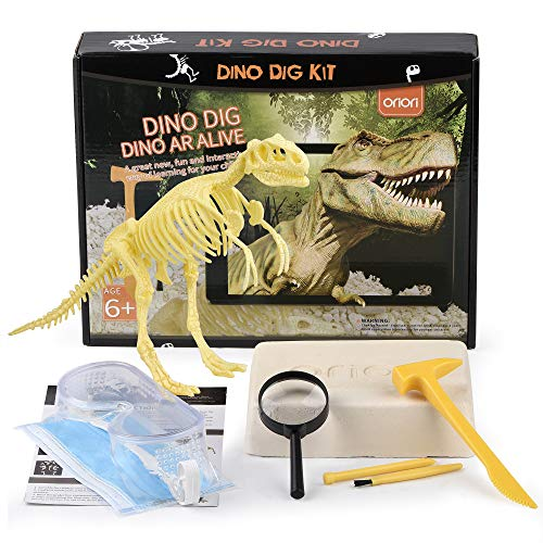 Karaqy Dinosaur 4D Review Fossil Archaeology Dig Kit Dinosaur Skeleton Revive by Scanning with Free App Compatible with Android and iOS System(Tyrannosaurus)
