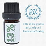 Bay-Essential-Oil-Laurel-Leaf-by-Simply-Earth-5-ml-100-Pure-Therapeutic-Grade