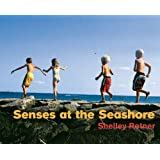 Senses at the Seashore (Shelley Rotner's Early Childhood Library)