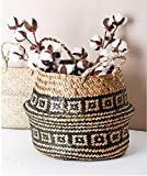 DOKOT Seagrass Plant Basket with Handles Natural