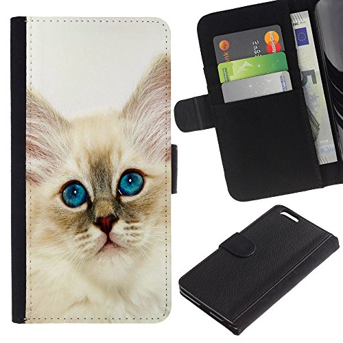 EuroCase - Apple Iphone 6 PLUS 5.5 - Persian cat ragdoll bobtail curl nebelung - Cuero PU Delgado caso cubierta Shell Armor Funda Case Cover