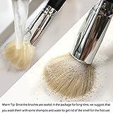 Qivange Makeup Brushes, Synthetic Eyeshadow Bronzer