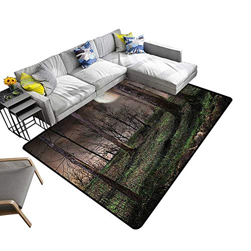 Non Slip Absorbent Carpet Dark Night in The Full Mo Horror Theme Grunge Style Halloween Brown No Chemical Odor 22 x 60 inch -