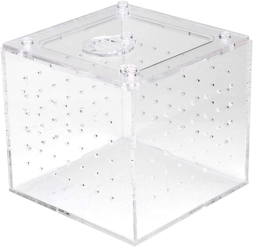 Acrylic Reptile Breeding Box Transparent Live Food Storage Insect Viewing Box for Spider Crickets Snails Hermit Crabs Tarantulas Geckos 3.9x3.9x3.5inch