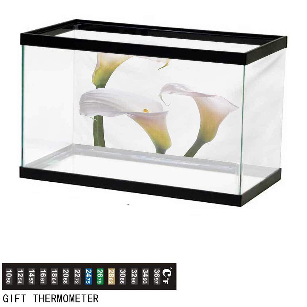 wwwhsl Aquarium Background,Flower,Flourishing Calla Lilies on White Fresh Spring Bouquet Gentle Nature Theme,Green White Yellow Fish Tank Backdrop 72'' L X 24'' H by wwwhsl