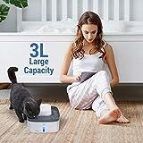 Veken 100oz/3L Pet Fountian, Automatic Cat Water