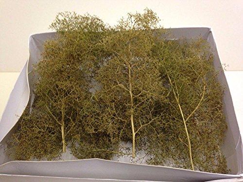 WWS Árboles Naturales medianos de Teloxys – Modelismo Ferroviario, Maquetas, Dioramas