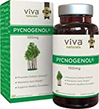 Viva Naturals Pycnogenol, 100mg, 60 Veggie Capsules - Proprietary French Pine Bark Extract