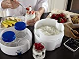Oster CKSTYM1012 Mykonos Greek Digital Yogurt