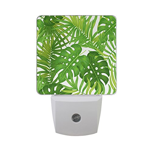 JOYPRINT Led Night Light Summer Hawaiian Tropical Palm Leaves, Auto Senor Dusk to Dawn Night Light Plug in for Kids Baby Girls Boys Adults Room by JOYPRINT