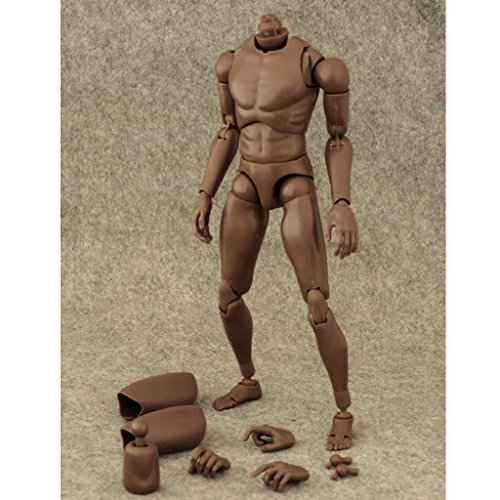 MagiDeal Narrow Shoulder 1:6 Figure African American Male Body for TTM18 TTM19
