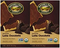 Nature\'s Path Frosted Toaster Pastry - Chocolate - 11 oz - 6 ct - 2 pk