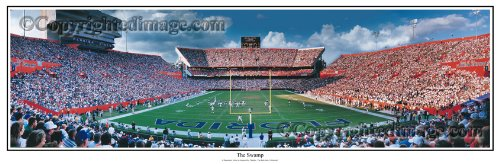 Florida Gators The Swamp - NCAA Collage Football Panoramic 13.5x39 Panoramic Poster. Frame Dimensions 15.5x41 Deluxe Double Matt & Brown