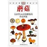 img - for Mushroom: 500 kinds of mushrooms in the world of color illustrations book / textbook / text book