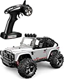 TOZO C1153 RC CAR Battleax High Speed 30km/h 4x4 Fast Race Cars 1:22 RC Scale RTR Racing 4WD Electric Power Buggy W/2.4G Radio Remote Control Off Road Powersport Gray
