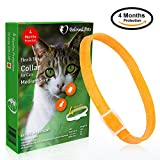 Beloved Pets Flea and tick Collar (100% Safe and effective) - Flea Control Collar for Cats and kittens - Unique formula for quick and long lasting protection (Orange)