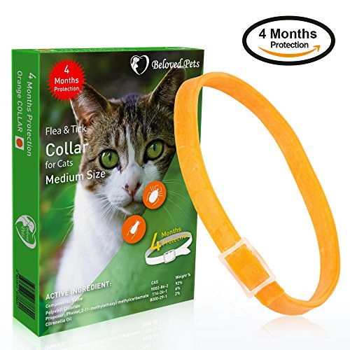 Beloved Pets Flea and tick Collar (100% Safe and effective) - Flea Control Collar for Cats and kittens - Unique formula for quick and long lasting protection for cats