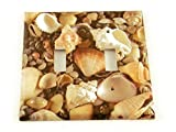 Double Toggle Light Switch Cover, Seashell (248D)
