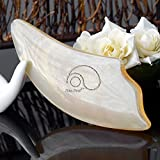 Natural Buffalo Horn Smooth Gua Sha Board Scraping Massage Tools For Body and Face,Trigger Point Myofascial Release (Triangle)