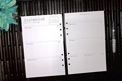 Day Runner Classic Daily - 2018 2019 2020 Daily A5 Planner Inserts, Paper Refills for Filofax, Kikki K, Mulberry, Webster's, Simple Stories, Day Timer, Day Designer and Half Letter Size 5.8