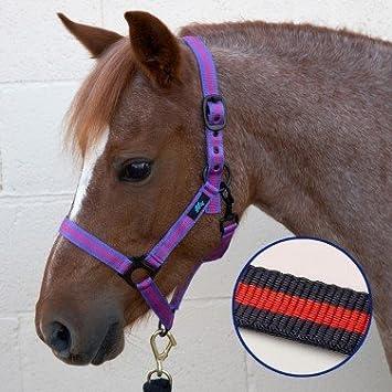 HY-Cabezada para caballos, color azul marino y rojo Pony-Única