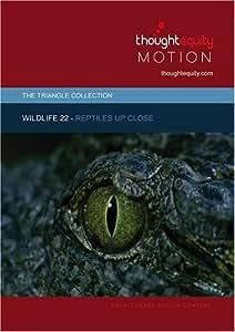 Wildlife 22 - Reptiles Up Close