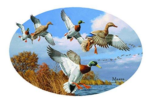 Enjoy It Wild Wings Mallard Ducks Car Sticker, Outdoor Rated Vinyl Sticker Decal