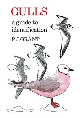 Download Gulls: A Guide to Identification (Poyser Monographs) PDF