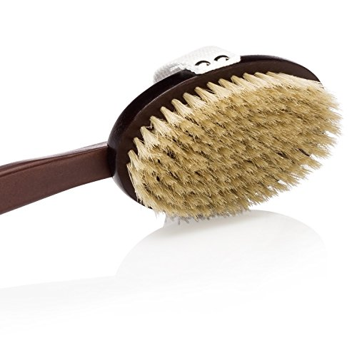Deluxe Natural Dry Body Brush for Overall Skin Wellness. Restore Youthful Glow. Removable Long Handle, Storage Bag & FREE B.O.N Nourishing Skin Oil (Overall Body)