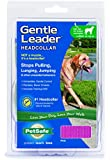 Petsafe - Premier Pet Gentle Leader Dog Headcollar / Head Collar (Pink, Medium)