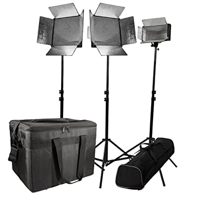 Ikan IDK2115-V2 Daylight Large Location Kit with 1 X ID500-V2 and 2 X ID1000-V2 (Black) by Ikan