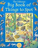 : Big Book of Things to Spot (1001 Things to Spot)